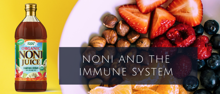 NONI AND THE IMMUNE SYSTEM